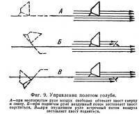 Фиг. 9. Управление полетом голубя