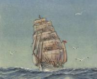 Рисунок барка «Товарищ»